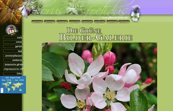 Vorschau von www.pflanzenliebe.de, Pflanzenliebe