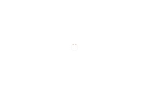 Vorschau von www.fashion-lager.de, NBD - Inh. Thomas Metzler