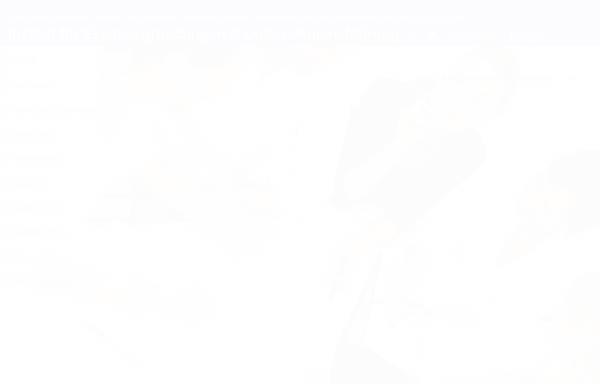 Vorschau von www.ieu-online.de, Institut für Existenzgründungen und Unternehmensführung - Wilfried Tönnis, M.A.