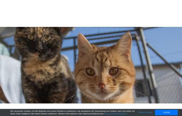 Vorschau von www.strubeli.ch, Tierheim Strubeli
