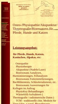 Vorschau der mobilen Webseite www.pferde-therapiezentrum.de, Doleschal Pferde-Therapiezentrum München
