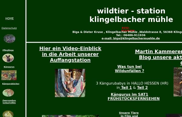 Vorschau von www.klingelbachermuehle.de, Klingelbacher Mühle