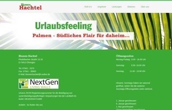 Vorschau von www.blumen-hachtel.de, Blumen Hachtel