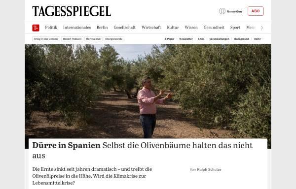 Vorschau von www.tagesspiegel.de, Der Tagesspiegel