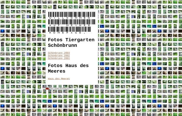 Vorschau von pl15994.macbay.de, Fotos Tiergarten Schönbrunn