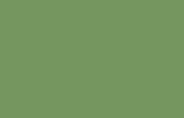 Vorschau von www.hundgehrecht.de, Hundgehrecht Tierphysiotherapie