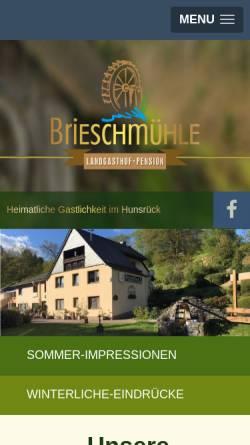 Vorschau der mobilen Webseite www.brieschmuehle.de, Hotel-Pension