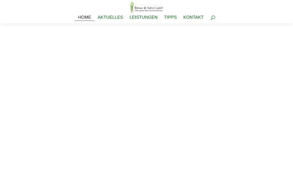Vorschau von www.boerner-schuhorthopaedie.de, Börner & Sohn GmbH