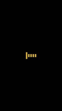 Vorschau der mobilen Webseite flaggs.de, Flaggs Limousinen Service - Inh. Christoph Moskhalis