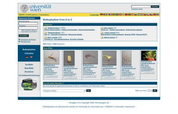 Vorschau von www.bulbophyllum.at, Bulbophyllum von A bis Z