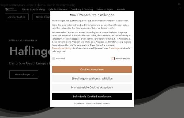Vorschau von www.haflinger-in-meura.de, Haflinger Gestüt Meura