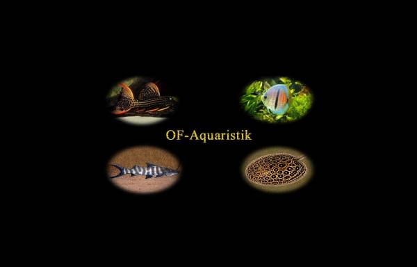 Vorschau von www.tanganyika.de, OF Aquaristik