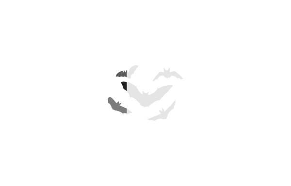 Vorschau von www.dechenhoehle.de, Dechenhöhle