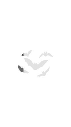 Vorschau der mobilen Webseite www.dechenhoehle.de, Dechenhöhle
