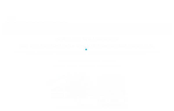Vorschau von www.vfb-schuetzen.de, Schützen im VfB Eberschütz 06/20 e.V.