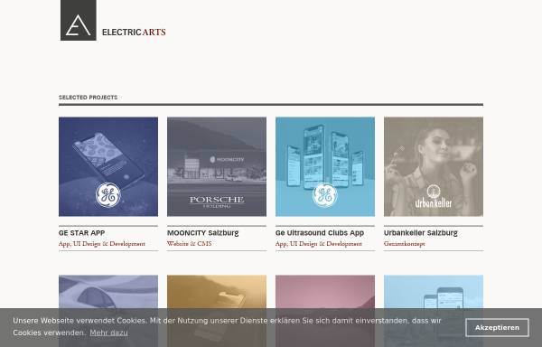 Vorschau von www.electric-arts.at, Electric Arts - Informationsdesign und Medienproduktion