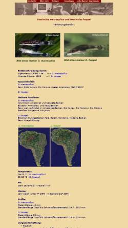 Vorschau der mobilen Webseite www.remowiechert.de, remowiechert.de