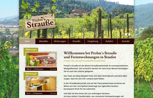 Vorschau von www.schleifsteinhof.de, Probst Schleifsteinhof
