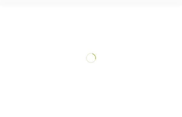 Vorschau von www.4-jz.de, Appartementanlage Vier Jahreszeiten