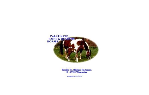 Vorschau von www.ppq-dr-hartmann.de, Palatinate Paint- und Quarter-Horses