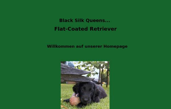 Vorschau von www.blackflats.de, Black Silk Queens
