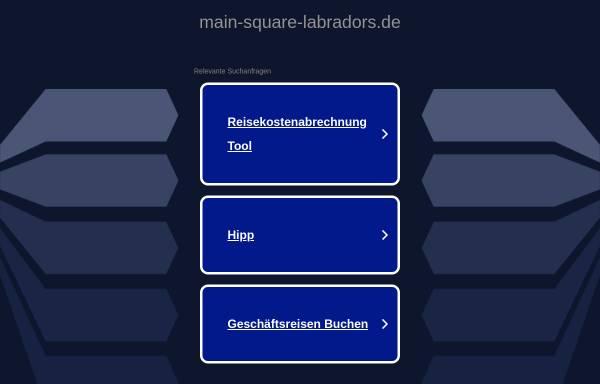 Vorschau von www.main-square-labradors.de, Of Main-Square