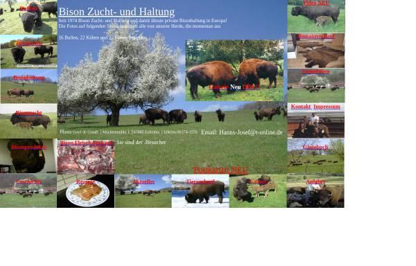 Vorschau von www.bisons.de, Hanns-Josef de Graaff
