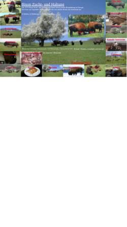 Vorschau der mobilen Webseite www.bisons.de, Hanns-Josef de Graaff