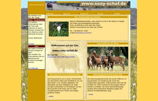 Vorschau von www.soay-schaf.de, Soay-Schaf.de, Wallenstein und Zuchtgemeinschaft Keßler/Kenzler