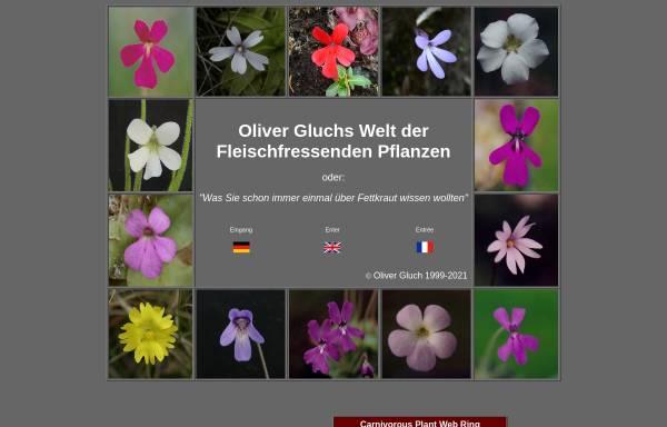 Vorschau von www.gluch.info, Oliver Gluchs Welt der Fleischfressenden Pflanzen