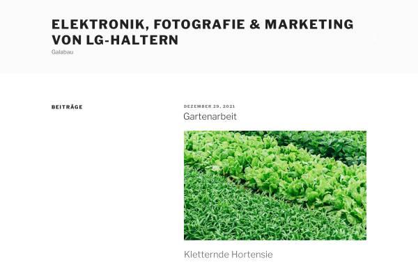 Vorschau von www.lg-haltern.de, Leichtathletik Gemeinschaft Haltern