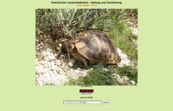 Vorschau von www.landschildkroete.net, Landschildkröte
