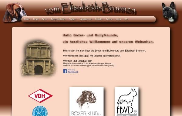 Vorschau von www.vom-elisabeth-brunnen.de, Vom Elisabeth-Brunnen