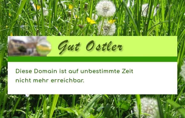 Vorschau von www.gutostler.de, Gut Ostler