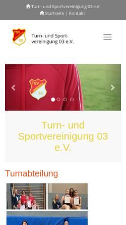 Vorschau der mobilen Webseite www.tsv-lingenfeld.de, Turn- und Sportvereinigung 03 e.V. Lingenfeld
