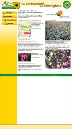 Vorschau der mobilen Webseite www.flaeminggruen.de, Zum Grünen Weg Gartenbau GbR