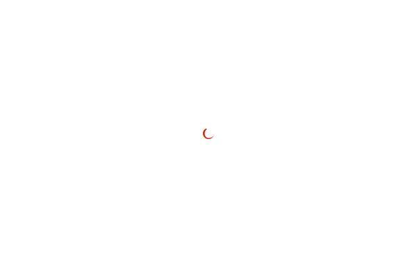 Vorschau von www.bms-solutions.de, Building Management Systems, Frank Lenders