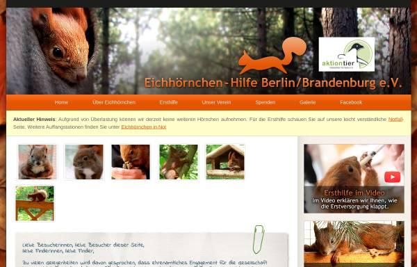 Vorschau von www.eichhoernchenhilfe-berlin.de, Eichhörnchenhilfe Berlin Brandenburg e.V.