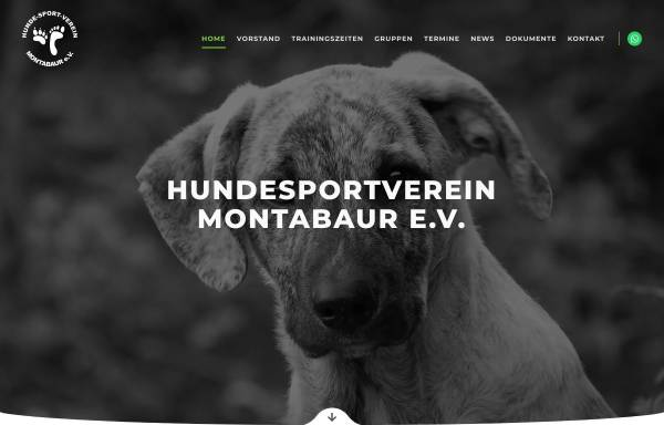 Vorschau von www.hsv-montabaur.de, Hundesportverein Montabaur e.V.