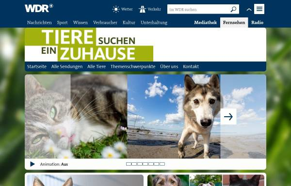 Vorschau von www.wdr.de, Tiere suchen ein Zuhause