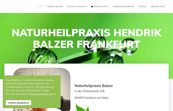 Vorschau von www.naturheilpraxis-frankfurt-main.de, Hendrik Balzer
