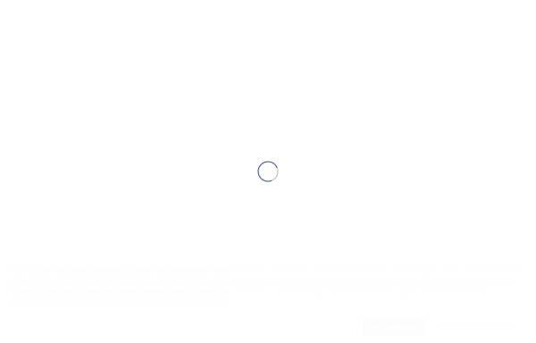 Vorschau von www.husum-tourismus.de, Tourismus und Stadtmarketing Husum GmbH