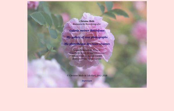 Vorschau von www.rosenfoto.de, Galerie mit Rosenfotos