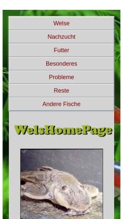 Vorschau der mobilen Webseite www.welse.net, WelsHomePage