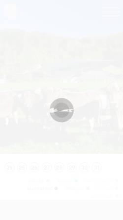 Vorschau der mobilen Webseite www.tiroler-festspiele.at, Tiroler Festspiele