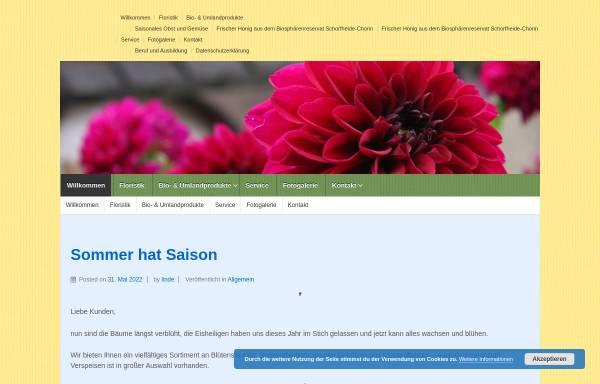 Vorschau von www.lindes-kornblume.de, Floristik Kornblume
