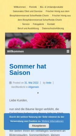 Vorschau der mobilen Webseite www.lindes-kornblume.de, Floristik Kornblume