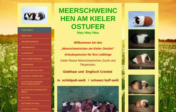 Vorschau von www.meerschweinchen-am-kieler-ostufer.de, Meerschweinchen am Kieler Ostufer