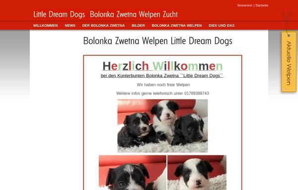 Vorschau von bolonka-zwetna-welpen.com, Little Dream Dogs
