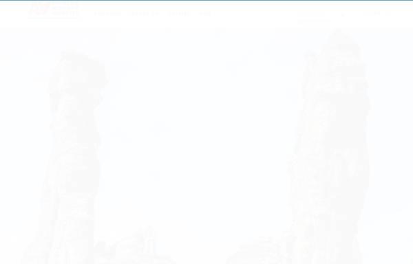 Vorschau von www.alpineaction.ch, Schweizer Bergsportschule in Flims, Graubünden
